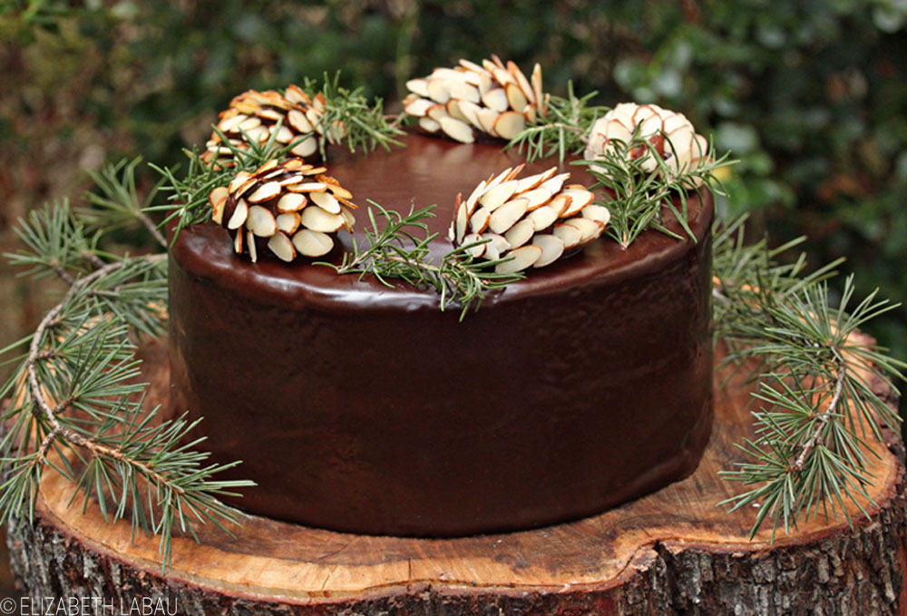 Chocolate Pinecones